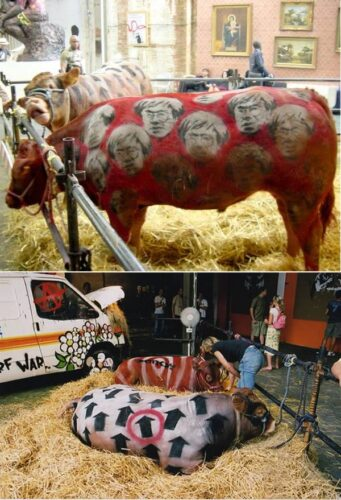 a99083_animal-canvas_8-cows2