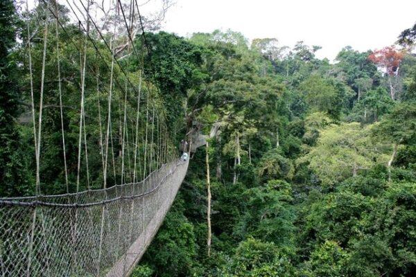 pontes_aterrorizantes2